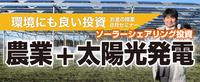上で電気・下で農業「最新・ソーラー投資」