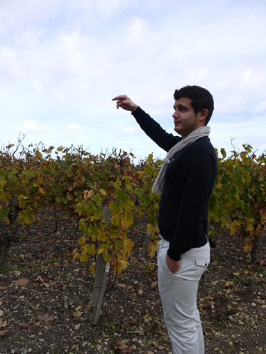 wine9n5.jpg
